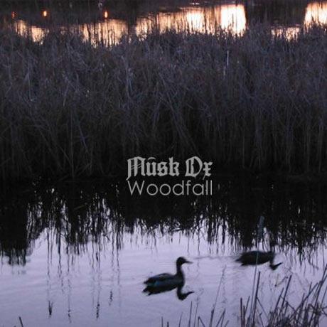 musk-ox---woodfall---big